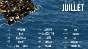 Calendrier des produits de la mer de juillet