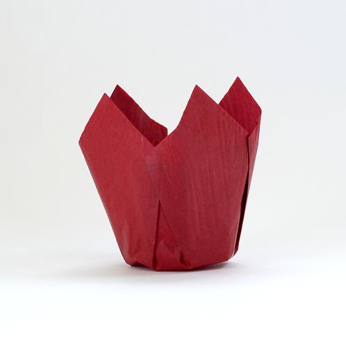 Capacillo Tulipán