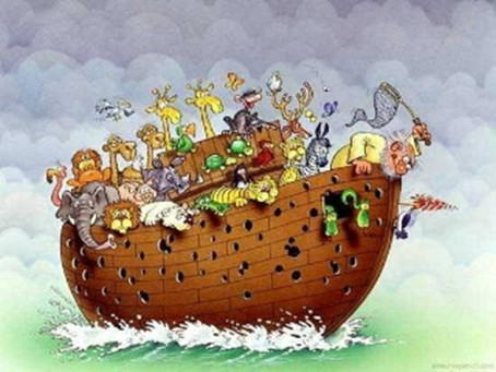Who let those Woodpeckers on the ark? Parshat Noah this Shabbat and Our Annual Pet Blessing this com