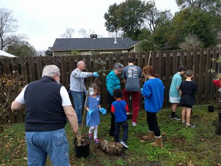 Larry M. Organizes Massive Tu B'Shvat Tree Planting at Temple
