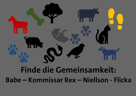 Natur und Tiere schützen