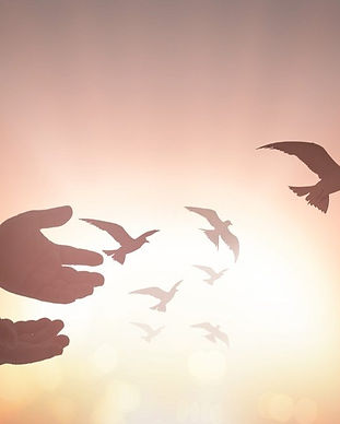Memorial-Service-Birds.jpg