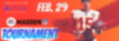 Madden Banner Wix-09.png