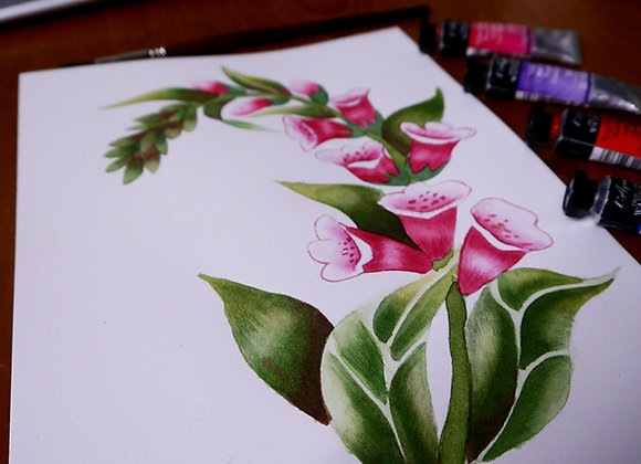 Fox Gloves Watercolour Illustration