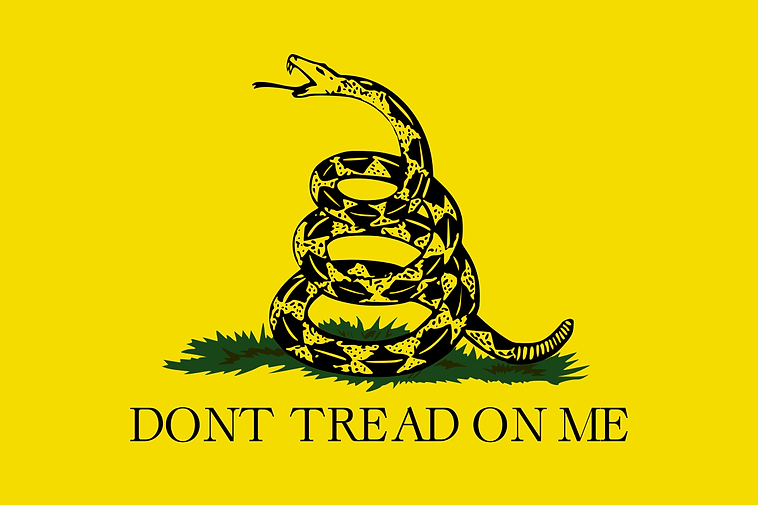 Dont tread on me.png