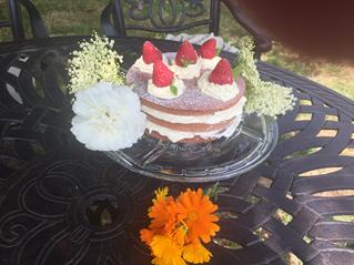 Oriana B Strawberry and Cream Cake
