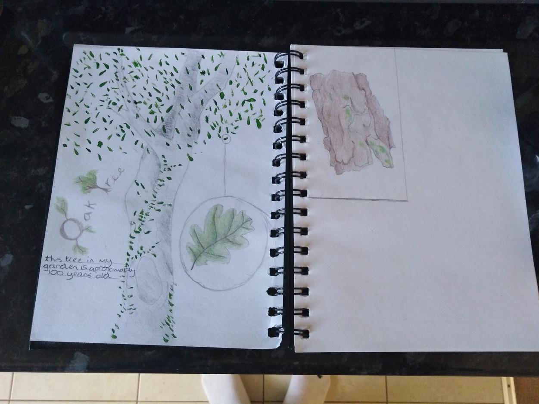 Callum A Sketchbook