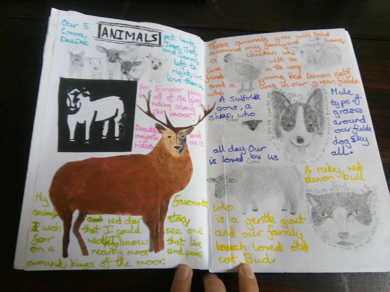 Hannah E Animals Sketchbook
