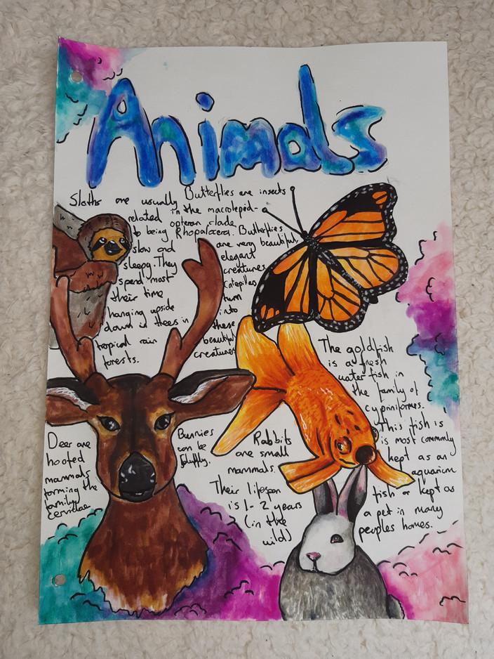 Aleisha O-H Sketchbook 1