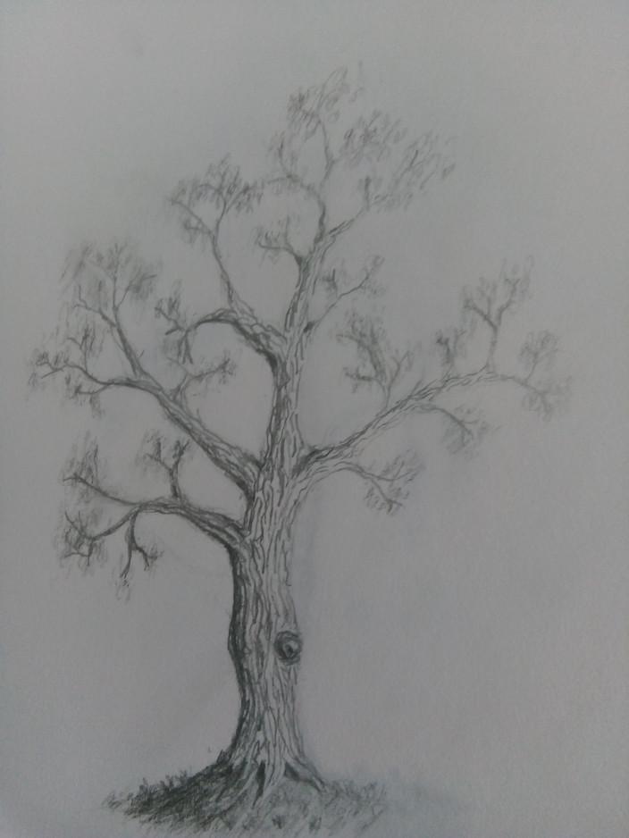 Hannah E Sketchbook 1