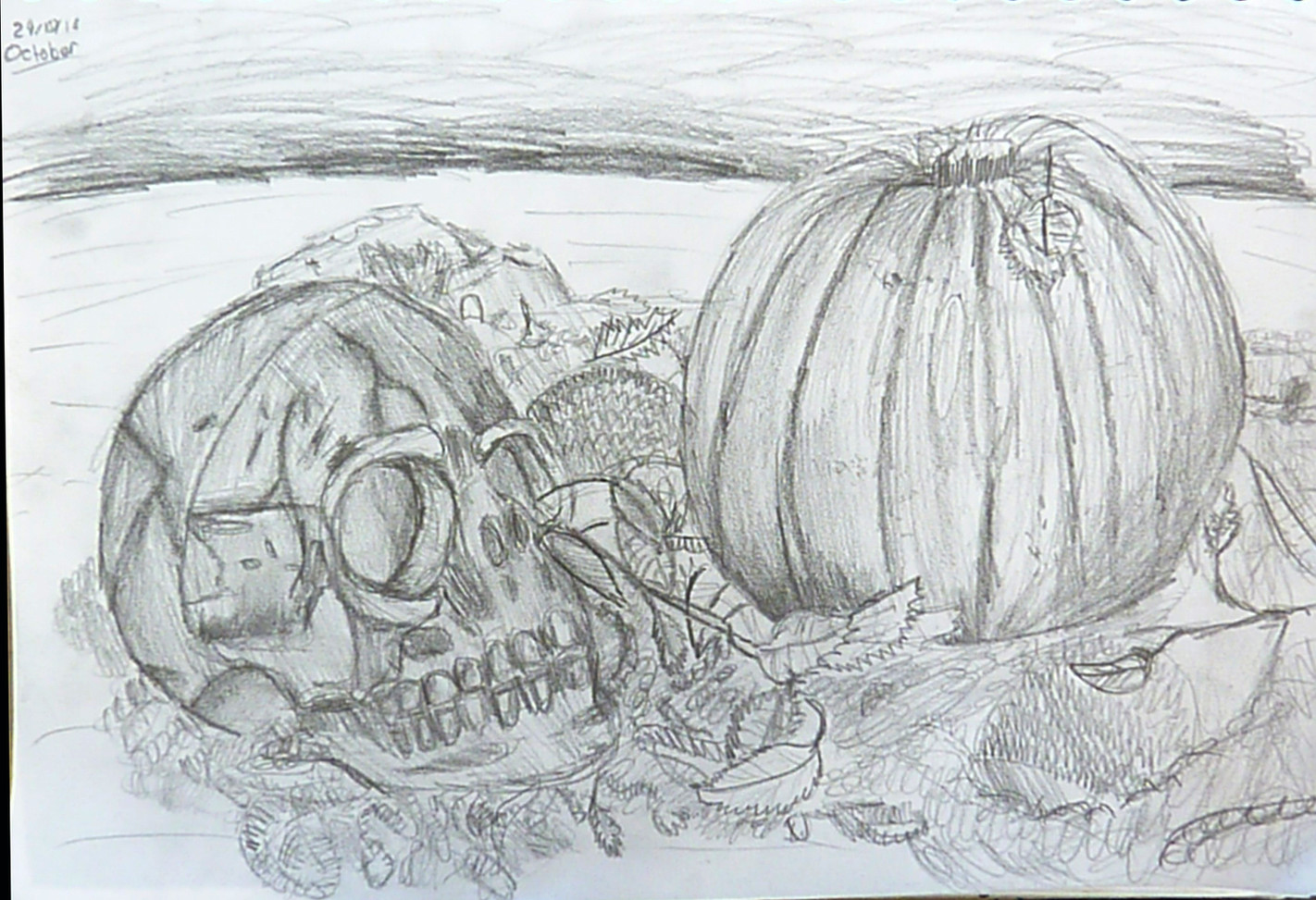 Year 9 Still Life Autumn Theme
