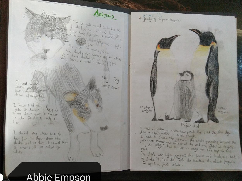 Animals Sketchbook Page Abbie E