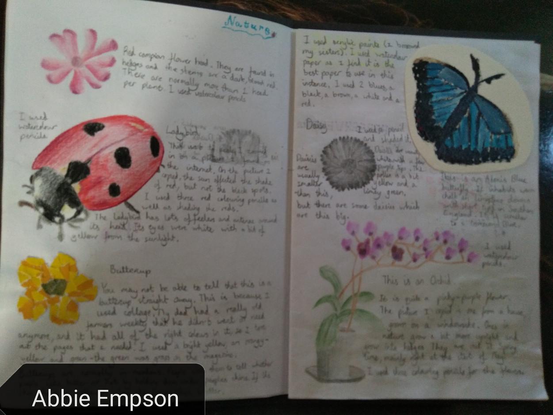 Nature Sketchbook Page Abbie E
