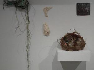 Function. Ceramics graduate and undergraduate exhibition at Cora Stafford Gallery.