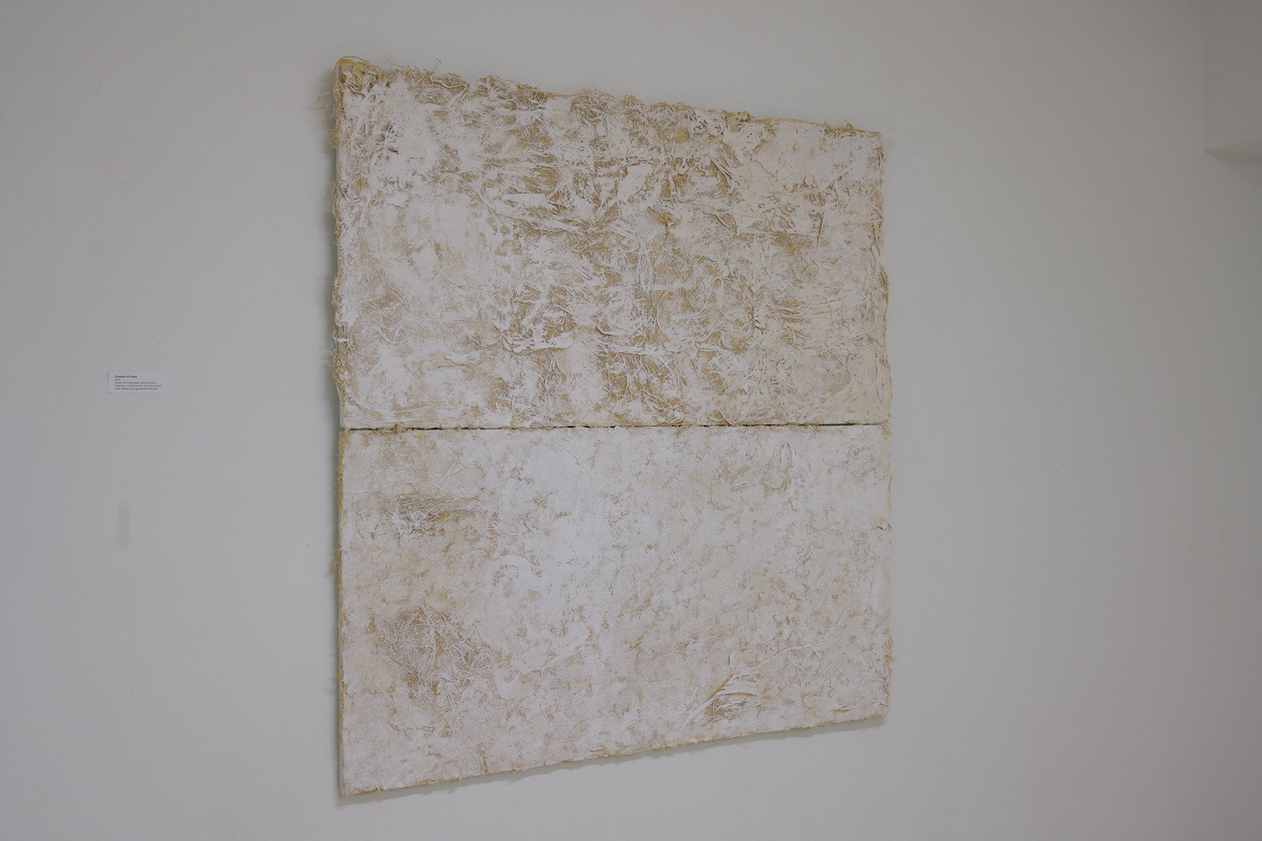 Corn husk paper with gesso on plywood board