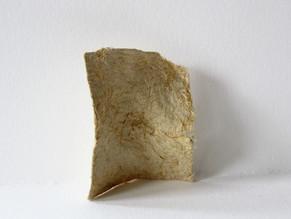 Samples of corn husk paper