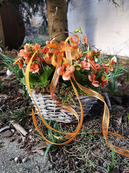 Korb mit Stiefmütterchen orange