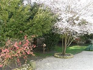 le parc au printemps