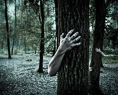 haunted-forest-britten-adams.jpg