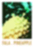 falapineapplewatermarked.jpg