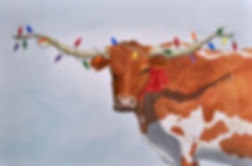 longhorn cow with Christmas lights