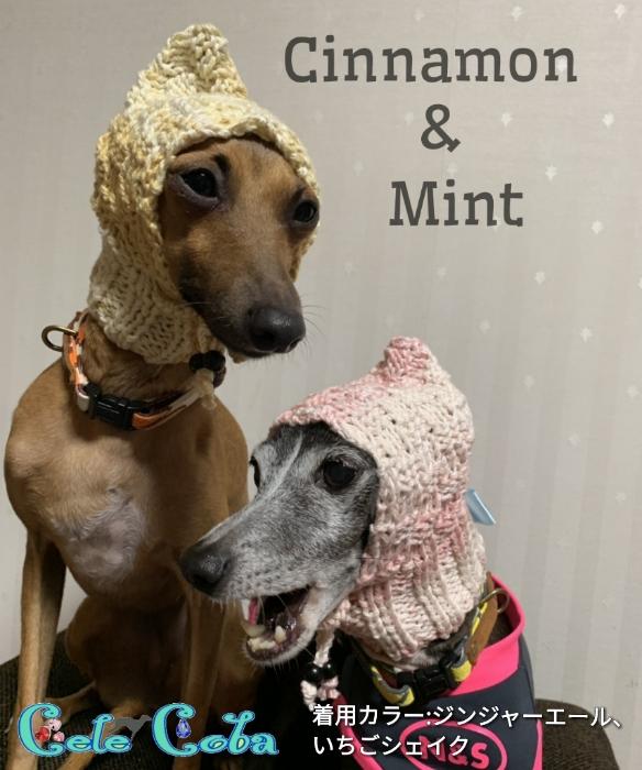 mint&cinnamon