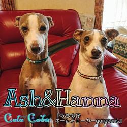 Ashさん&Hannaさん