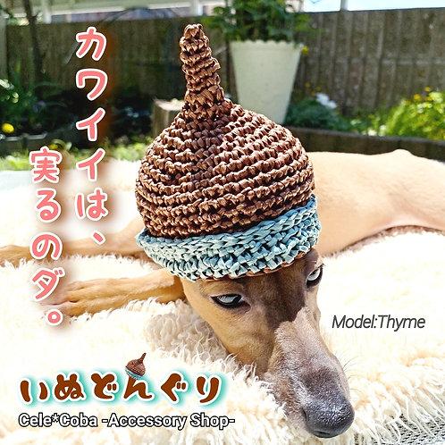 いぬどんぐり(犬用手編みハット)