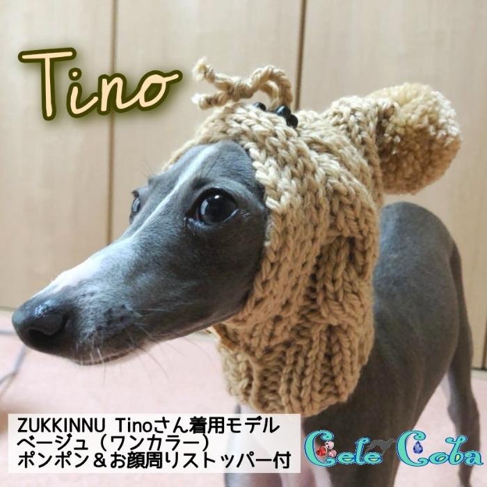 『ZUKKINNUなモデルたち:Tino様』
