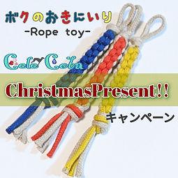 Christmasキャンペーン.jpg