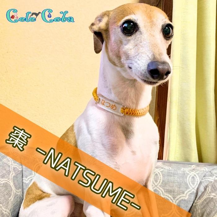 NATSUMEさん