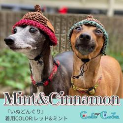 mintさん&cinnamonさん