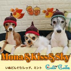 Monaさん&Kissさん&Skyさん
