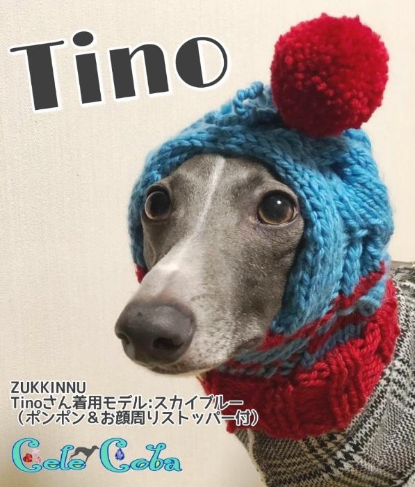 『ZUKKINNUなモデルたち:Tino 様』