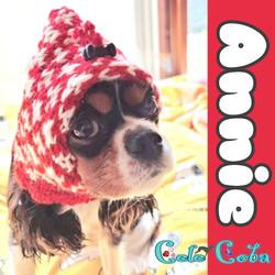 Annieさん