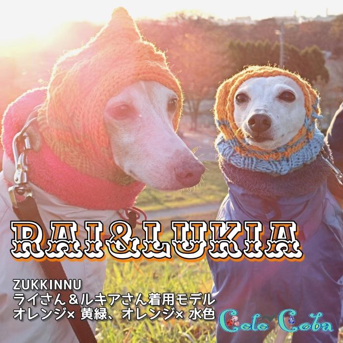 『ZUKKINNUなモデルたち:RAI様&LUKIA様』