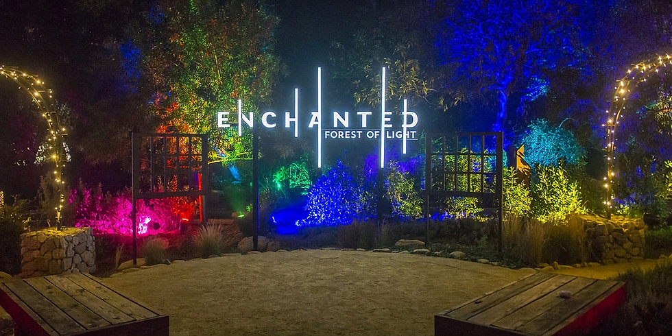 Enchanted:Forest of Lights