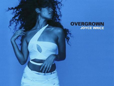 "Joyce Wrice: ""Overgrown""- Review"