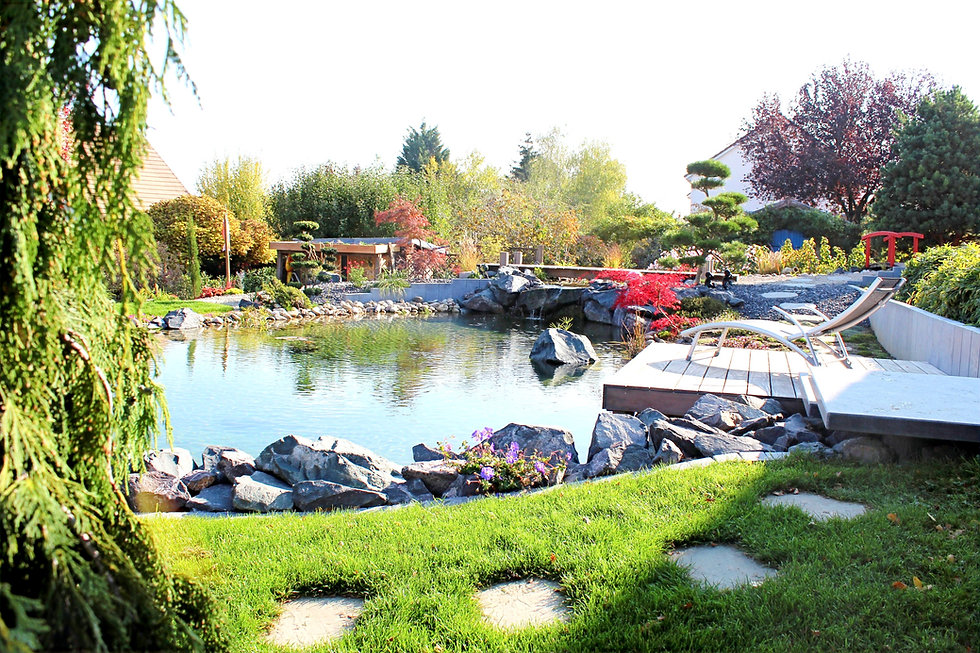 bassin-qualite-paysage-2_edited.jpg