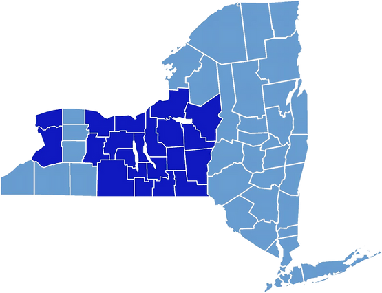 NY%20County%20Map_edited.png