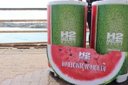 H2 Melon to the Masses - Kit