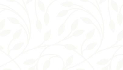 white background image