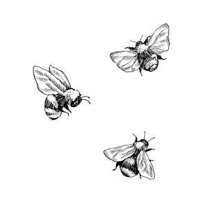 Pollinator Principles