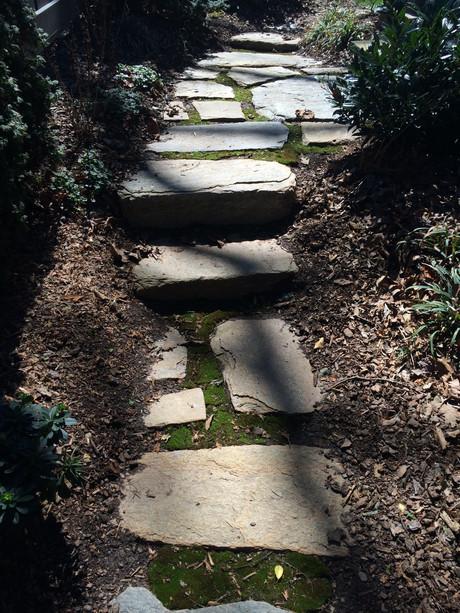 Stone Steps w/ Moss Asheville