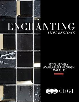 Enchanting Impressions.png