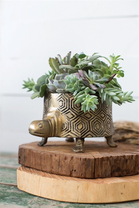 Tommie Turtle Pot
