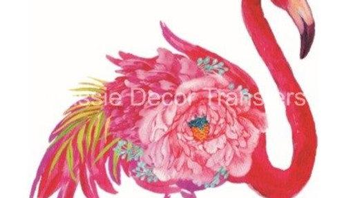 Flamingo Transfer FT