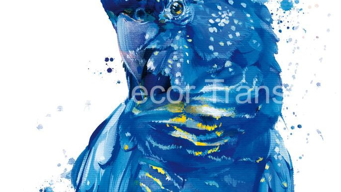 Blue Cockatoo decoupage poster A3