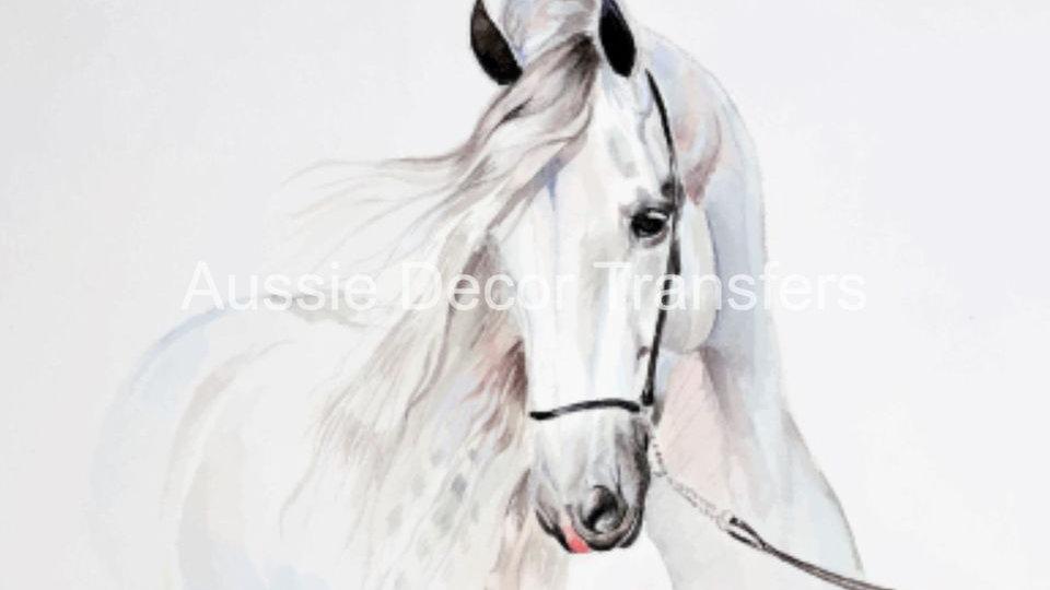Watercolour White Horse photo print A1