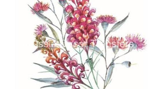 Australian Wildflowers III - GumNuts & Grevilleas Transfer (GGT)
